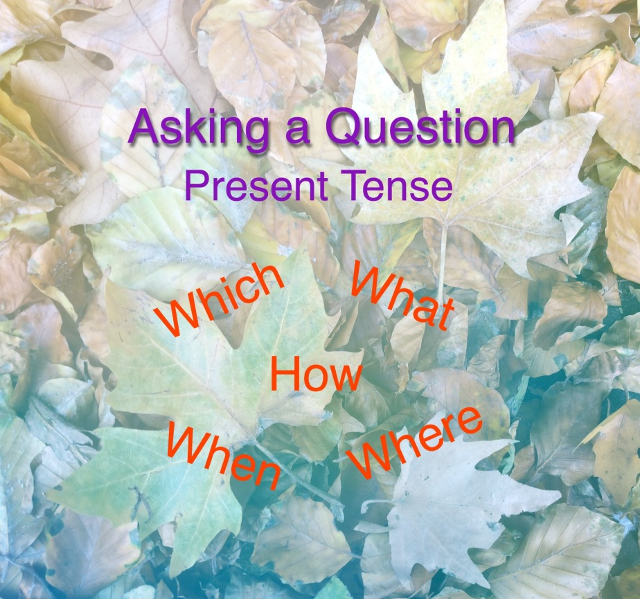 Asking a Question. Lesson One. Present Tense.